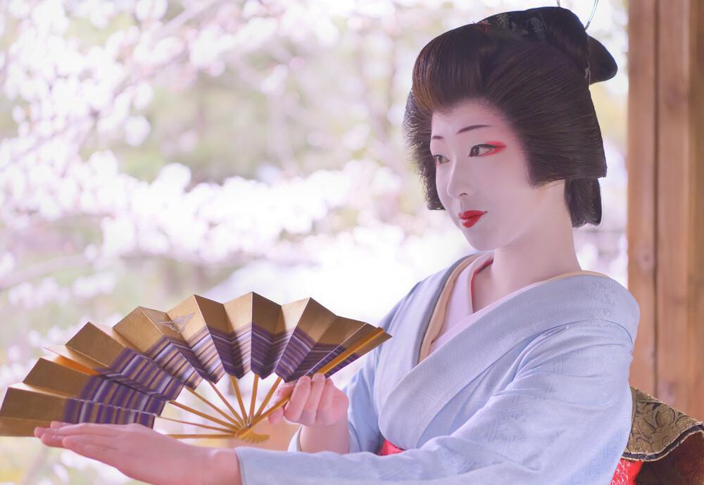 11月21日(土)まめ藤さんを応援する紅葉の撮影会