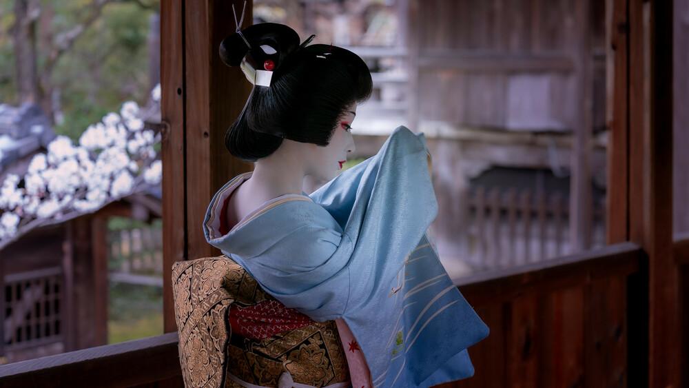 11月21日(土)まめ藤さんを応援する舞の鑑賞会