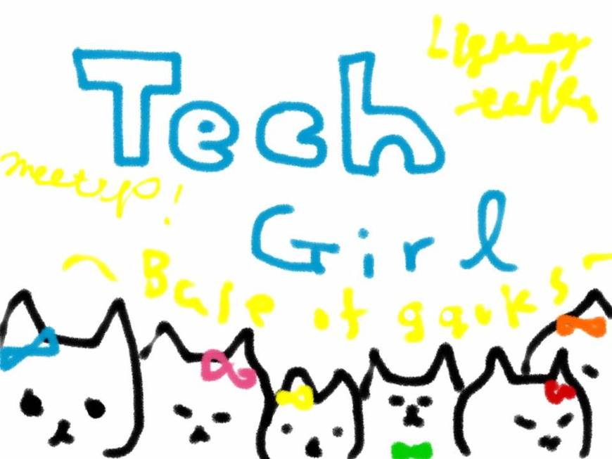 33191 normal 1446690551 techgirlvol.3