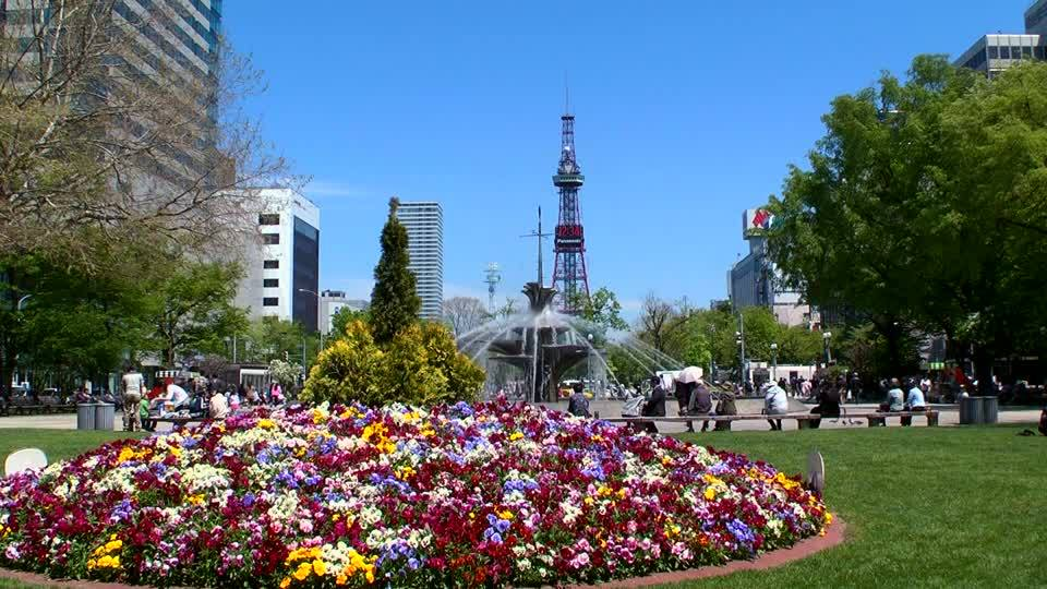 69665 normal 1516169225 638035613 sapporo tv tower odori koen beginning of summer flowerbed