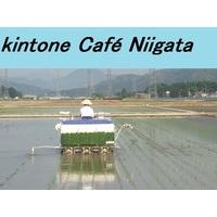 kintone Café 新潟