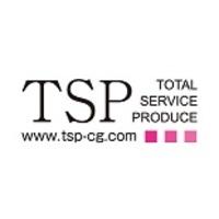 太陽光発電 TSP